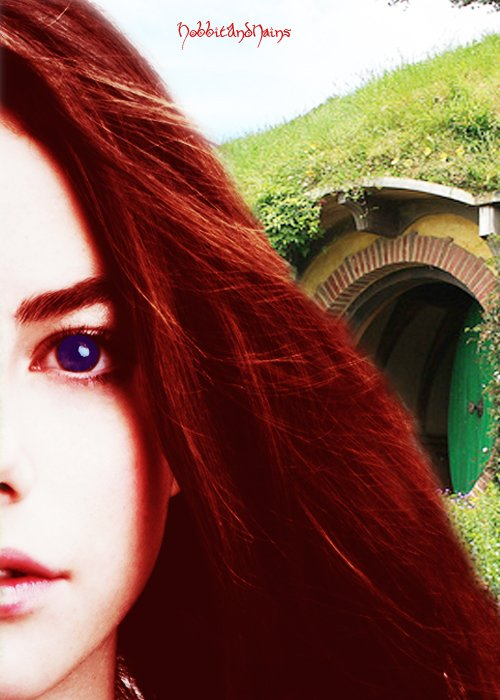 Chapitre 1 : Un magicien, un hobbit et des nains