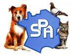 La SPA (Société Protectrice des Animaux)