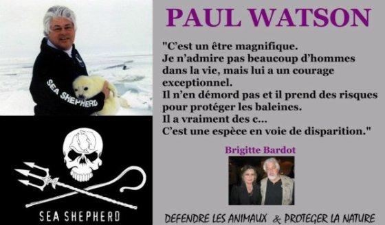 Comité de soutien au Capitaine Paul Watson