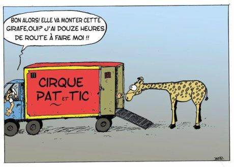 Des cirques ? Oui, mais sans animaux !