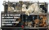 La terrible situation des chiens et chats en Asie