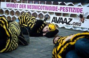 Il faut sauver les abeilles !