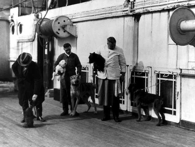 Les chiens et le Titanic