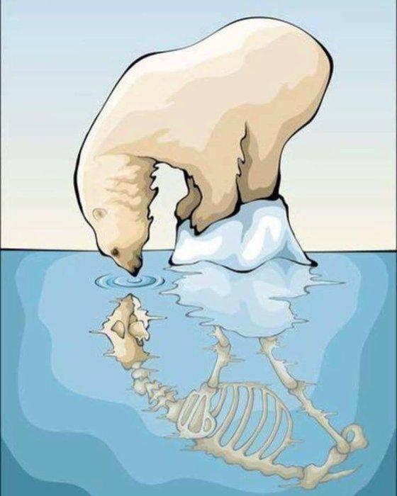 Fonte des glaces: une triste réalité