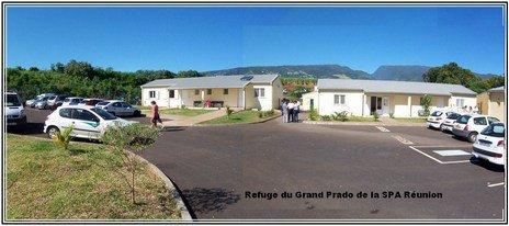 URGENCE à la Réunion: MAJ 27/10/16 à ne pas manquer !