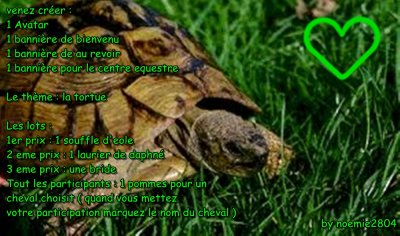 Equideow : Concour : tortues