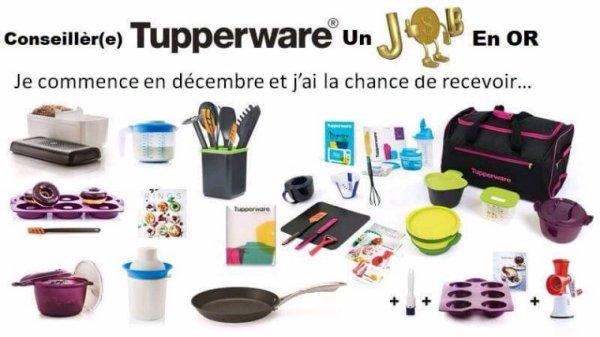 Pour seuls qui veux commencer chez Tupperware belgique