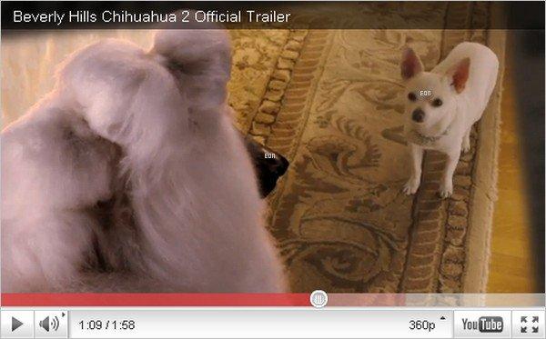 """. Emily a prêté sa voix à 4 personnages (ou chiens) du film """"Beverly Hills Chihuahua 2"""", qui devrait sortir prochainement en salle. Découvrez la bande-annonce ci-dessous. . ."""