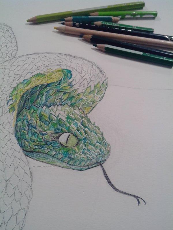 Projet en cours_Snake