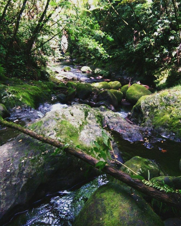 Back to Nacali falls