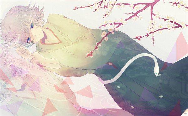 Grande Battle des Youkais aux cheveux blancs: ..... Le vainqueur est  Tomoe!! (suivis de Soshi Miketsukami) Et toi , c'est quoi ton avis????  ;)