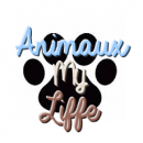 Photo de Animaux-my-liffe