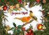 Joyeux Noël à tous les amis des oiseaux