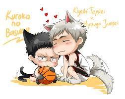 Kuroko's no basket !