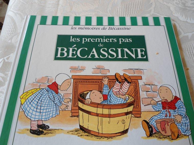 bécassine, l'histoire...
