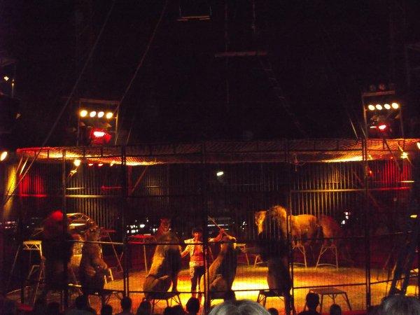 Cirque Pinder 2013 Courseulle sur mer