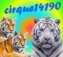Photo de cirque14190