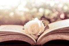 Blog de Livre-Rouge-Passion
