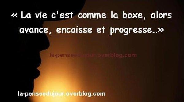 La vie c'est comme la boxe