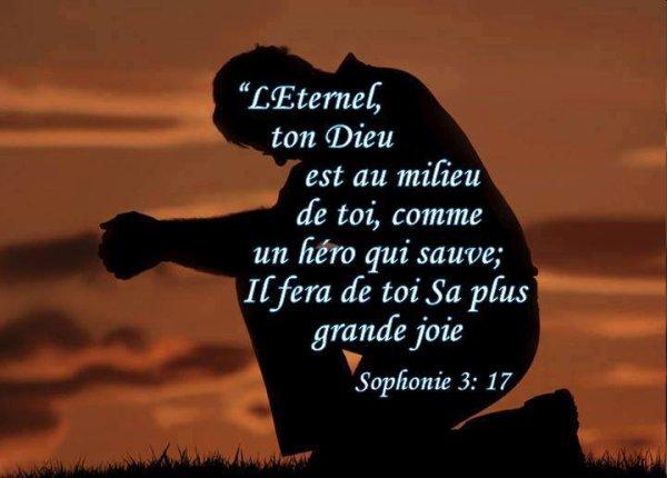 Sophonie chapitre 3 versets 17