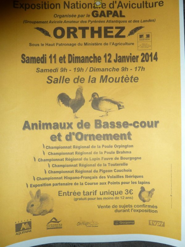 EXPO d' ORTHEZ