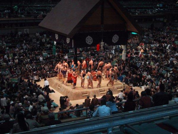Chapitre 9: Don de moelle et sumo