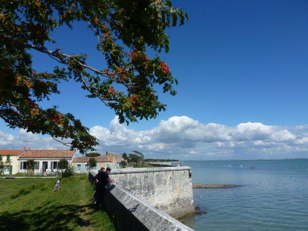 Une journée à l'île d'Aix