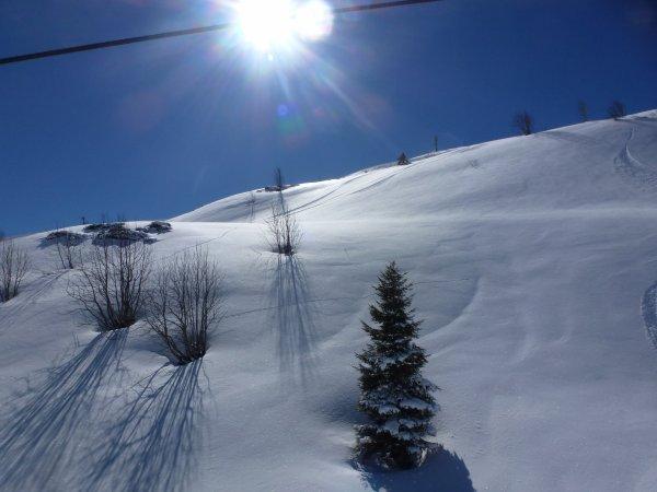 Un peu de ski !