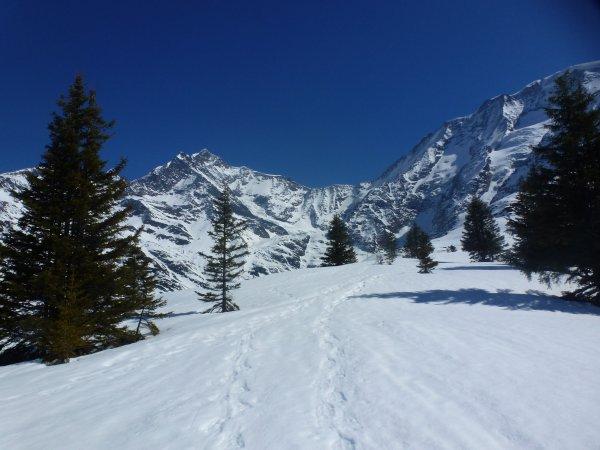Petit séjour en montagne !