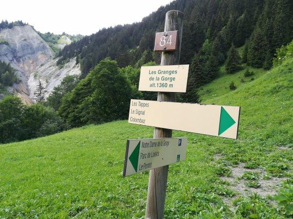 Samedi 18 juillet - Randonnée en montagne - 4 h de marche !