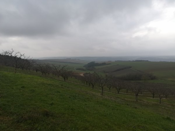 Jeudi 7 janvier - Sortie Solo - 73 km de vélo