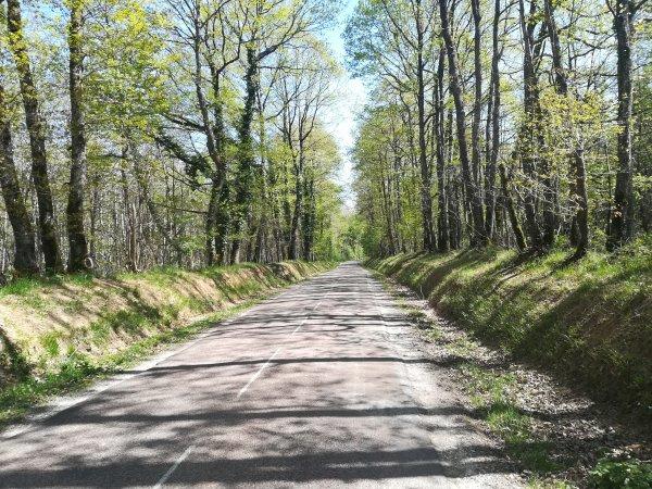 Mardi 27 avril - Sortie solo - 95 km de vélo
