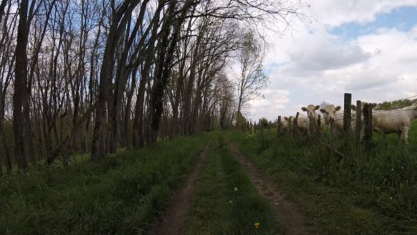 Jeudi 29 avril - Petite sortie VTT - 28 km