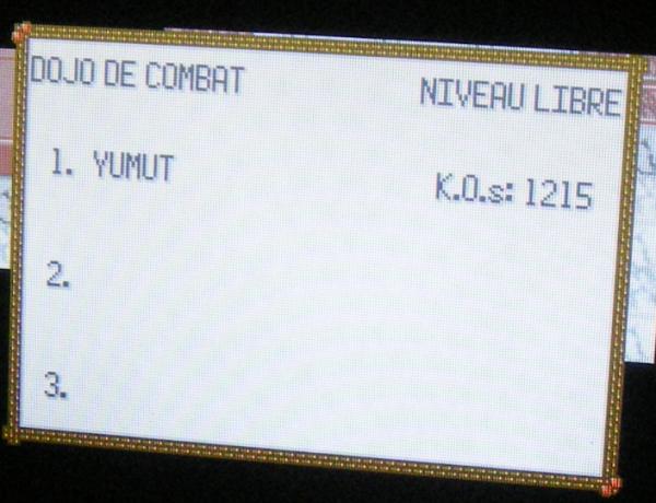 Dojo de Combat Nv.100, 1215 K.O.s consécutifs (Pokémon Emeraude)