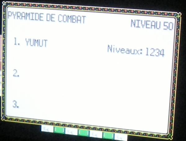 Pyramide de Combat Nv.50, 1234 victoires consécutives (Pokémon Emeraude)