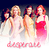 Photo de Desperate--Housewives-x