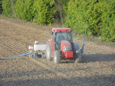 semis maïs avec monosem 6 rangs et cx 80