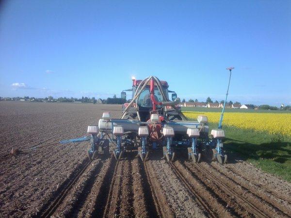semis de maïs avec semoir monosem, trémie à engrais et mccormick MC120