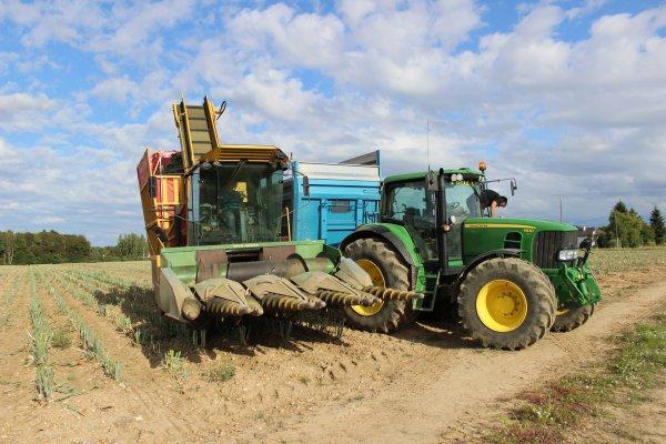 récolte des graines d'oignons avec une machine unique faite par l'exploitant