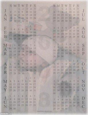 calendrier 2009  de brady