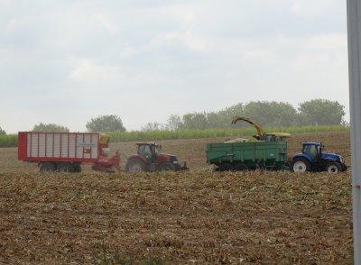ensilage maïs pour biométhanisation