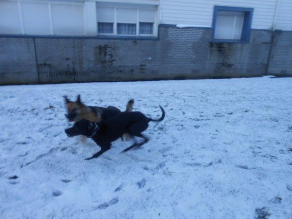 les fille s amuse dans la neige