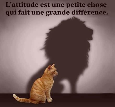 Positive Attitude !