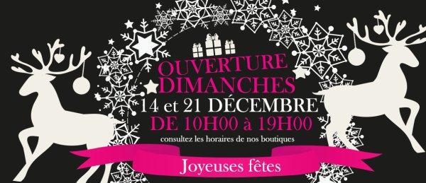 Love Shop By Loving ouverts les dimanches de décembre