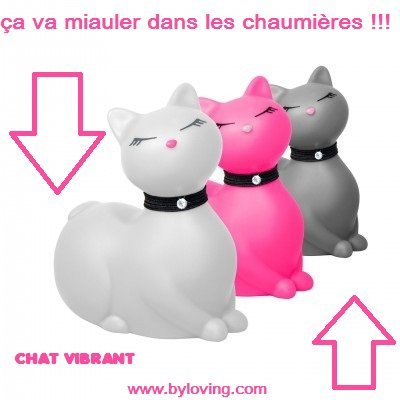 Chat vibrant et canard vibrant Big Teaze Toys dans vos Love Shop Tours et Aix en Provence By Loving