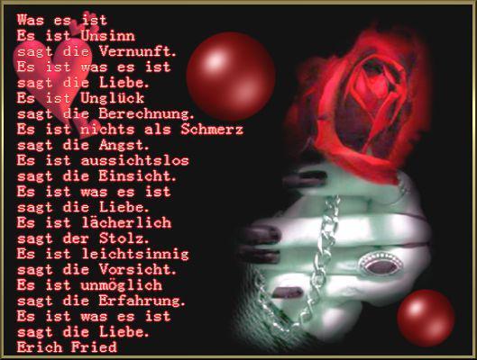 Liebe Gedichte Zitate Sprüche Und Bilder