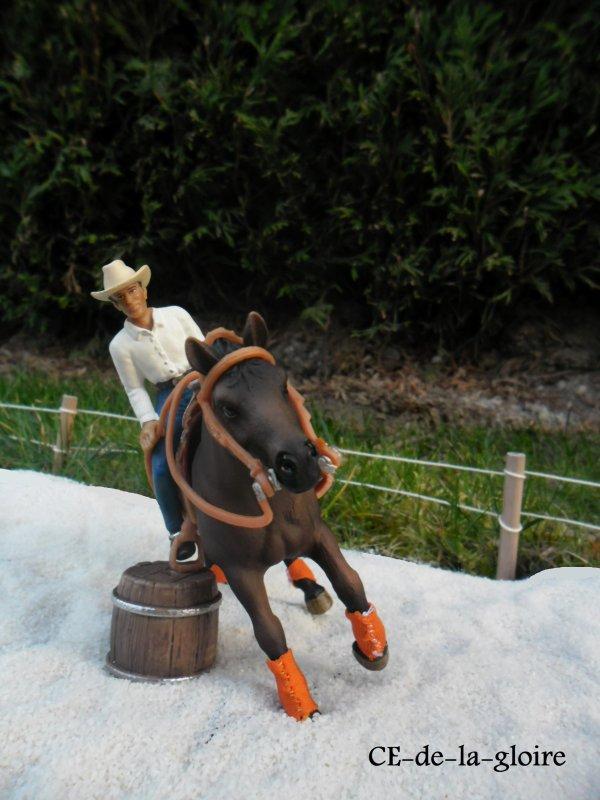 Un nouveau cheval qui fait déjà parler dès son arrivée ....