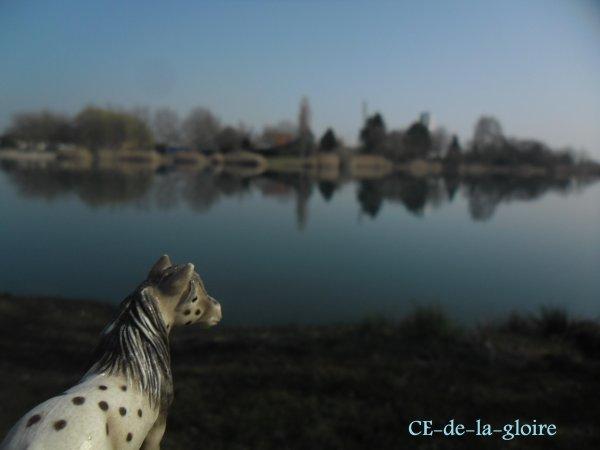 """"""" L'air du paradis et celui qui souffle entre les oreilles d'un cheval """""""