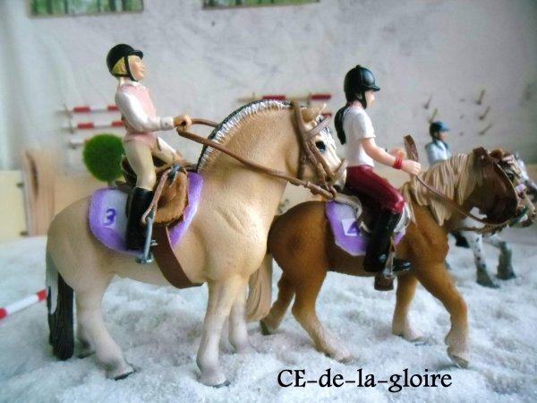 Equipe de pony games