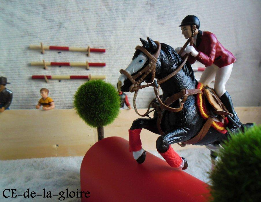 bienvenue au centre equestre de la gloire